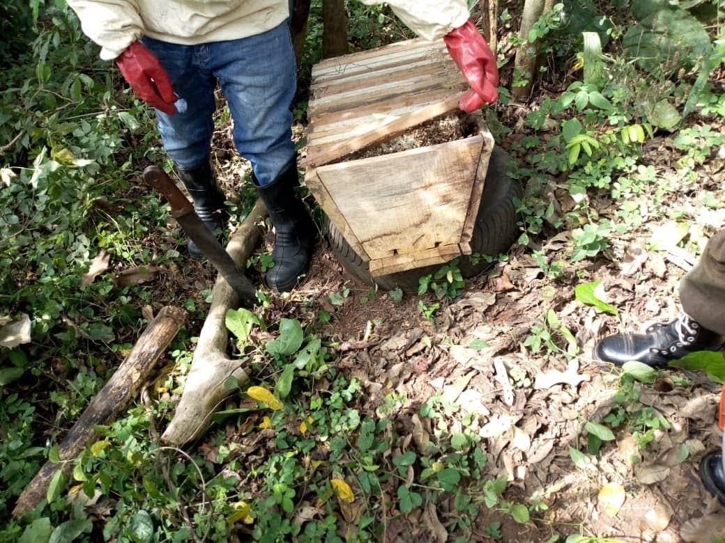 ARISE Rural Women, Edo honey bee farm